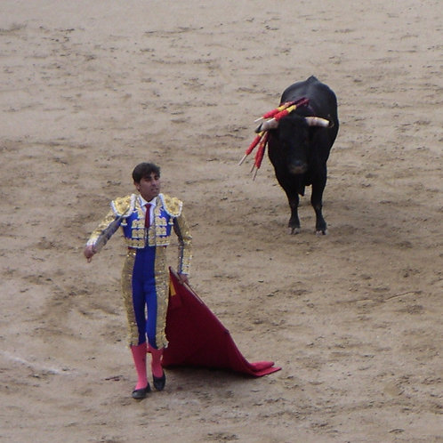 Bullfight Collection