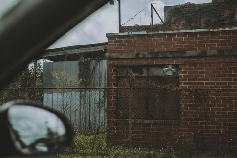 Urban_Savannah_unsure-3.jpg