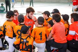 Torneo AVIS Cairo