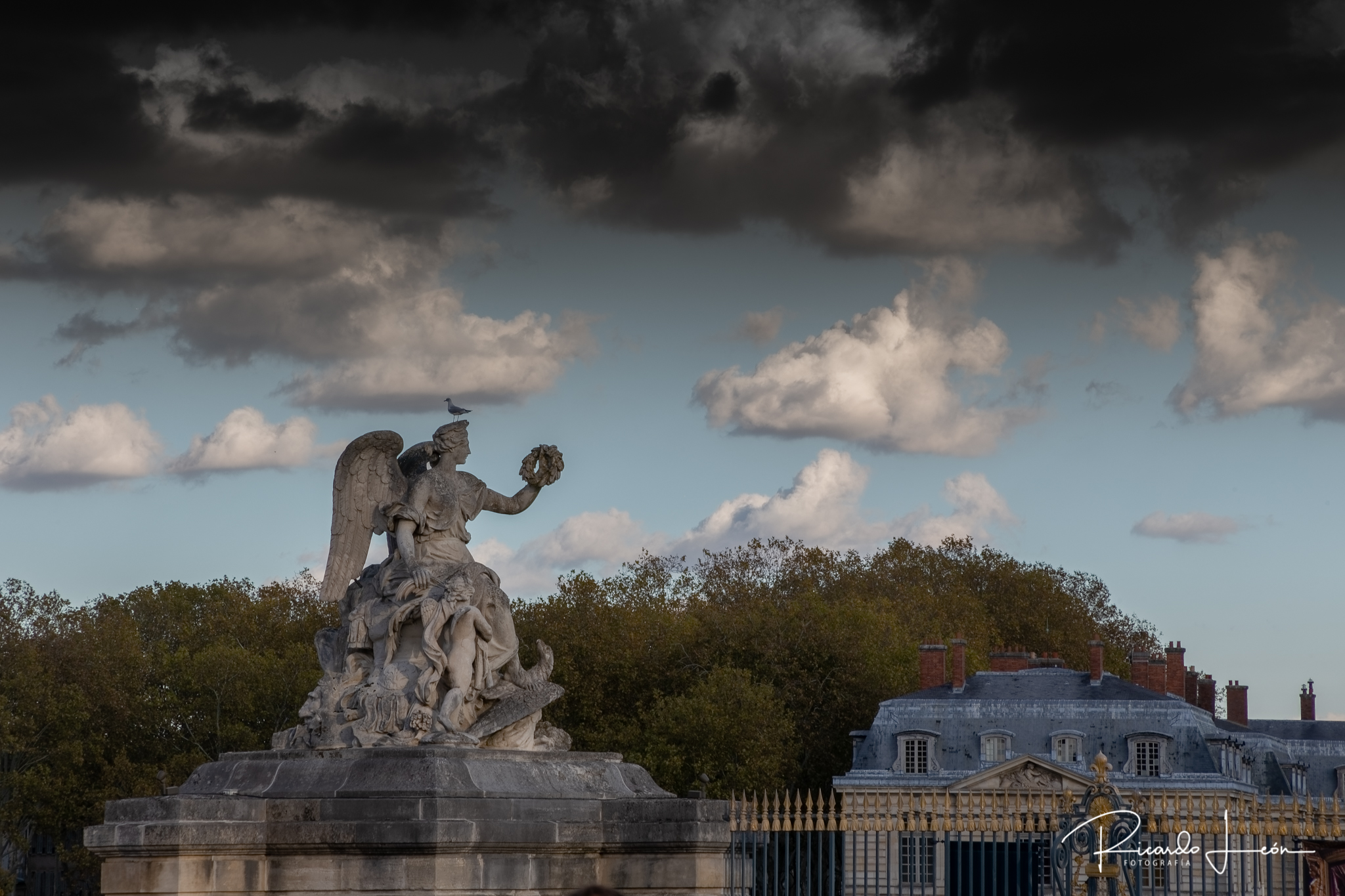 WIX_ Versalles_MG_5003