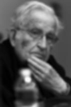 Noam Chomsky, por Ricardo León