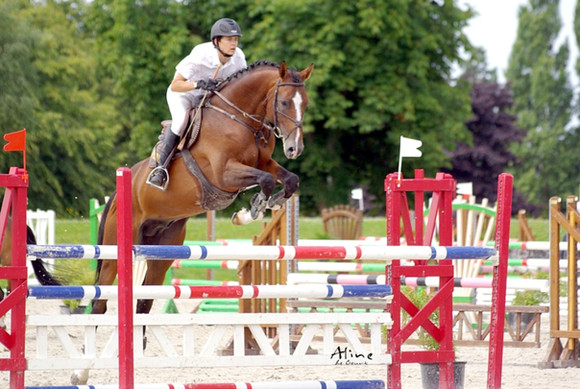 Quaprice for ever __ Paradiziak Stallion