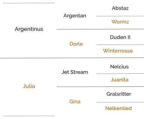 Origines Argentina.jpg