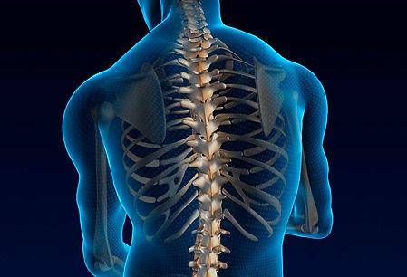 Faran Cooper (Spine 2).jpg