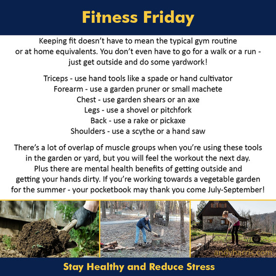 Fitness Friday 3
