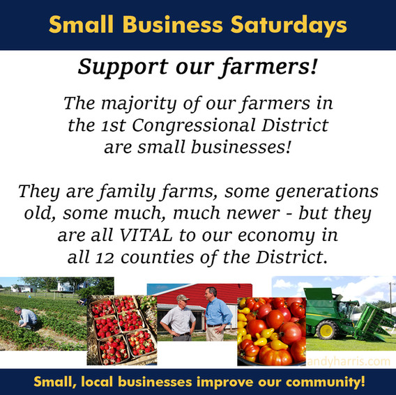 Small Business Saturday 4