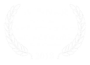 Film hub SE winner_FINAL.png