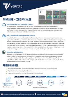 RunPrime - Professional Services (1)