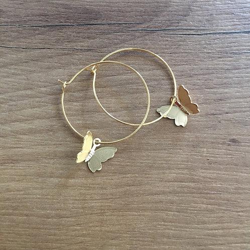 Boucles Papillons