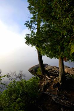 Algonquin Park early morning mist