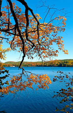 Dorset fall lake