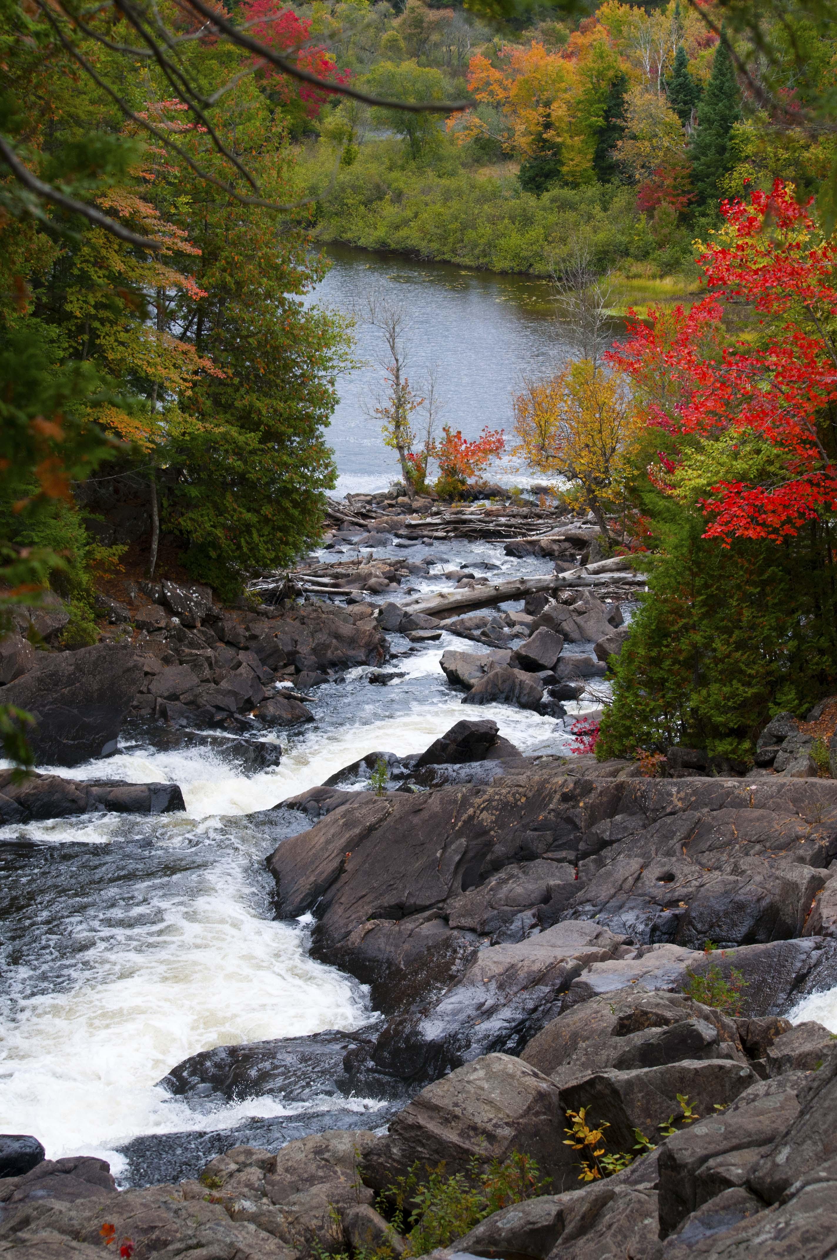 Algonquin falls in fall
