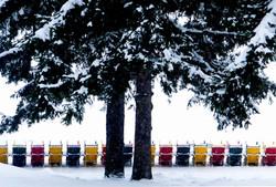 Muskoka chairs in winter