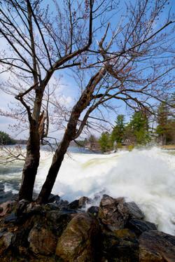 Bala Falls