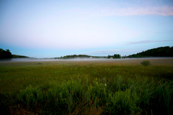 Muskoka early morning mist