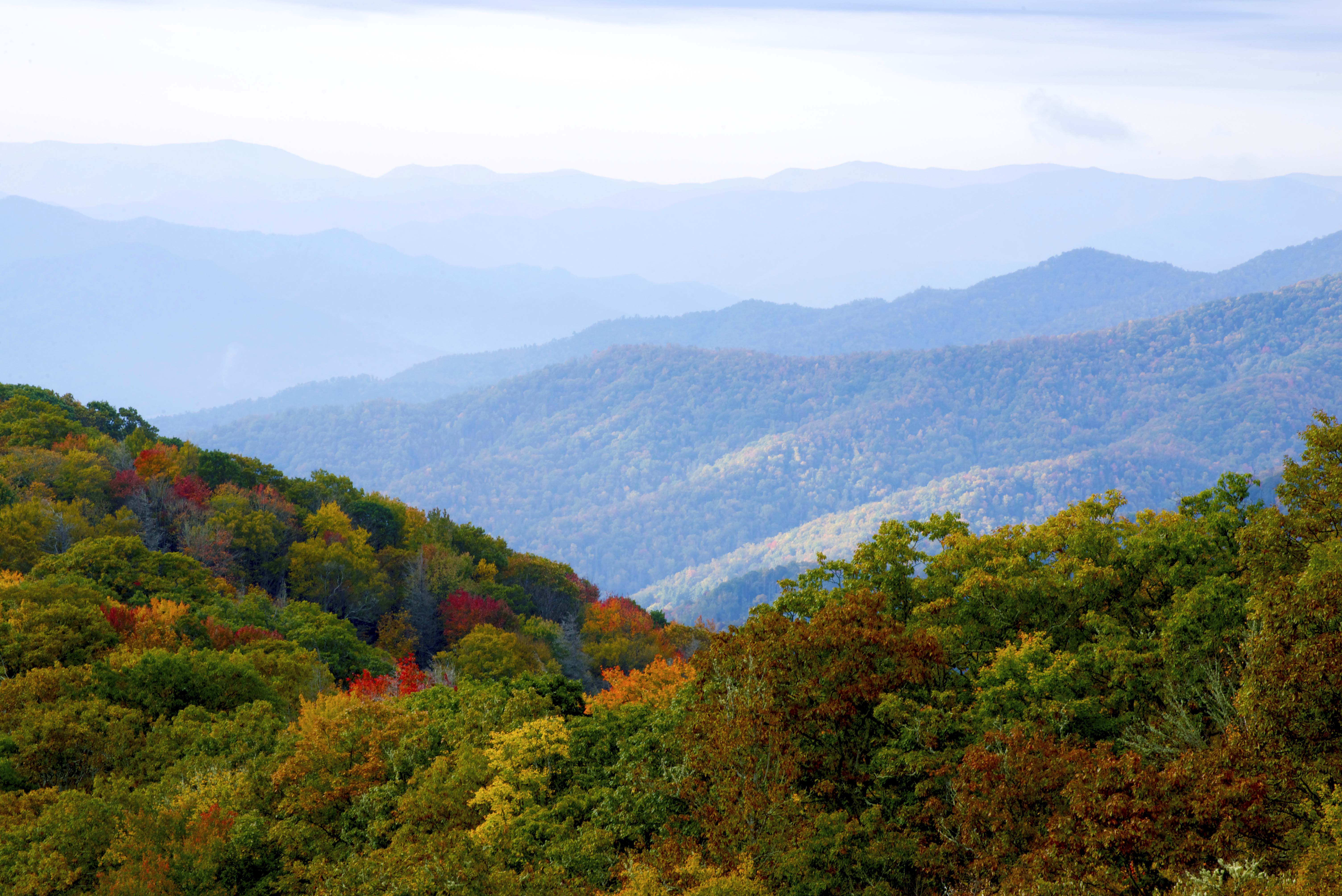 Great Smoky in fall