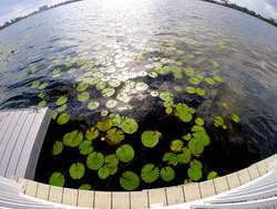GOPRO LAKE
