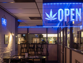 Cannabis and the Law: What Happens When Cannabis is Legalized in America?
