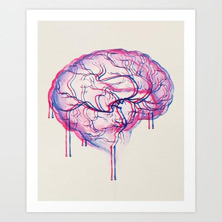 Kortikal Kalınlığın Davranışlarımızla Olan Bağlantısı