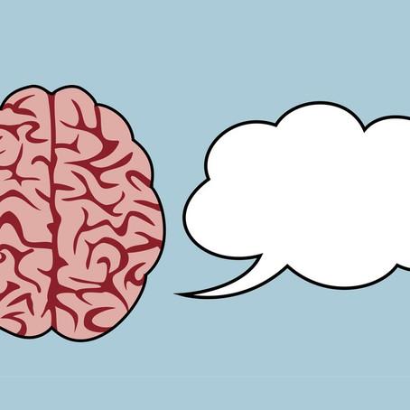 Beynimiz Konuşmamızı Nasıl Takip Eder?
