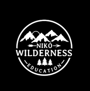 NIKO logo.png