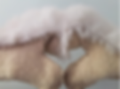 Rabbite Fur Mittens.PNG