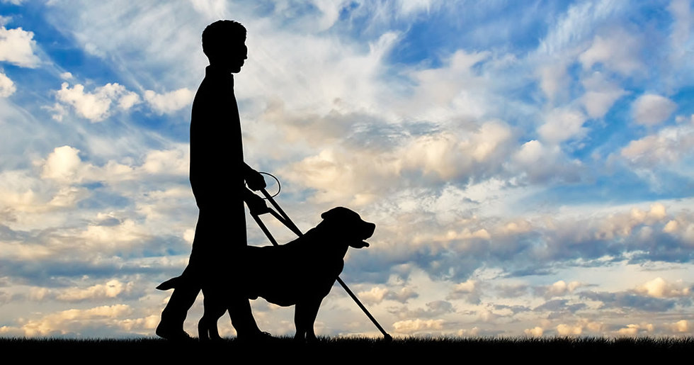 legally-blind-person-dog-clouds-1200x630