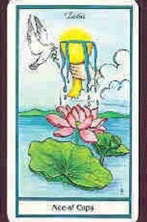 Tarot, Lenormand, or Oracle Card Reading- 40 minute