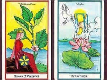 Tarot, Lenormand, or Oracle Card Reading- 20 minute