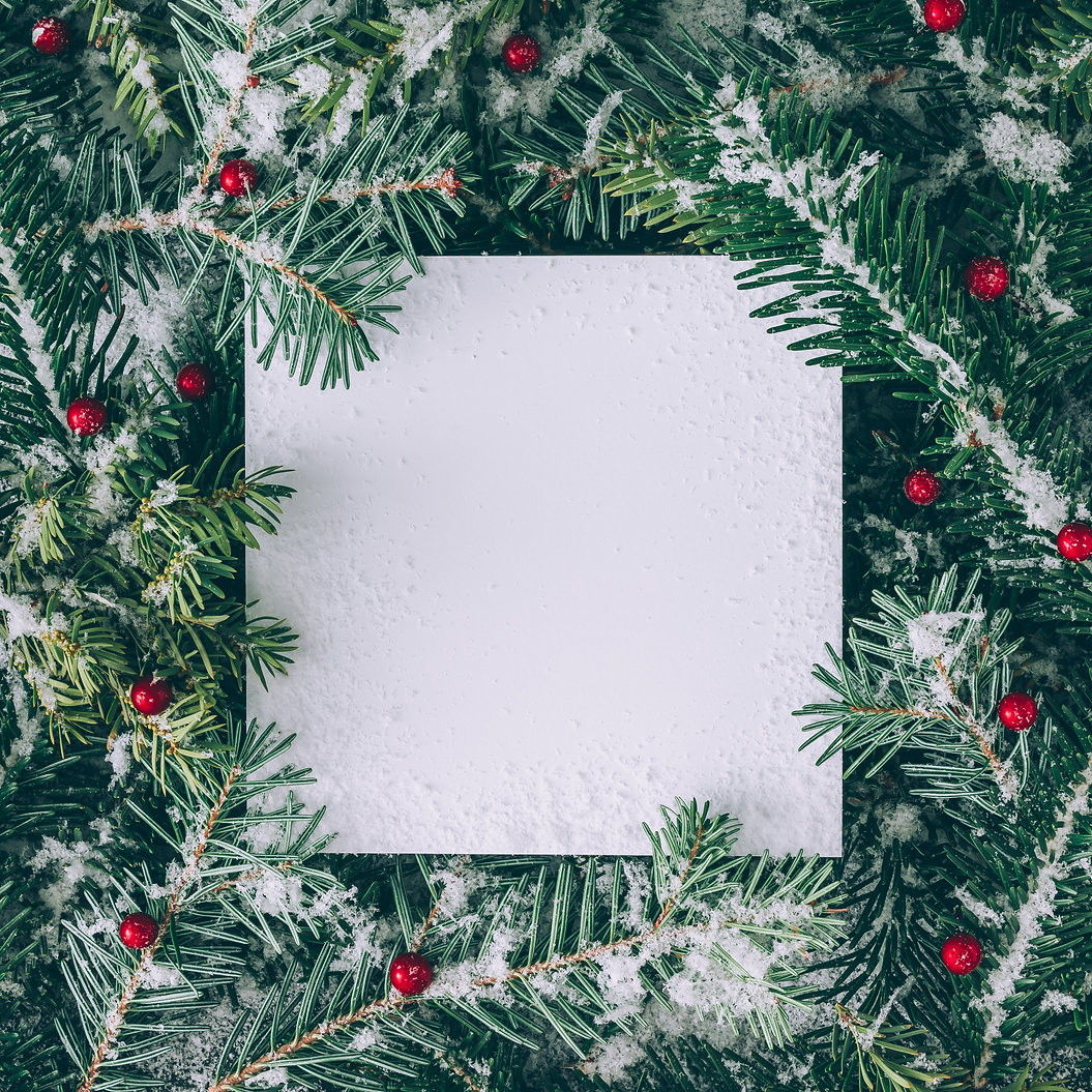 Creative layout made of Christmas tree b