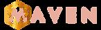 MAVEN-NEW-02.png
