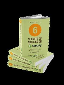 6 Secrets of Success.png