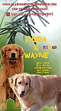 Dora& Wayne loc.jpg