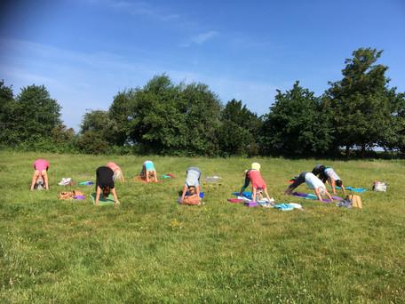 East Boldre Multilevel Yoga in Summer