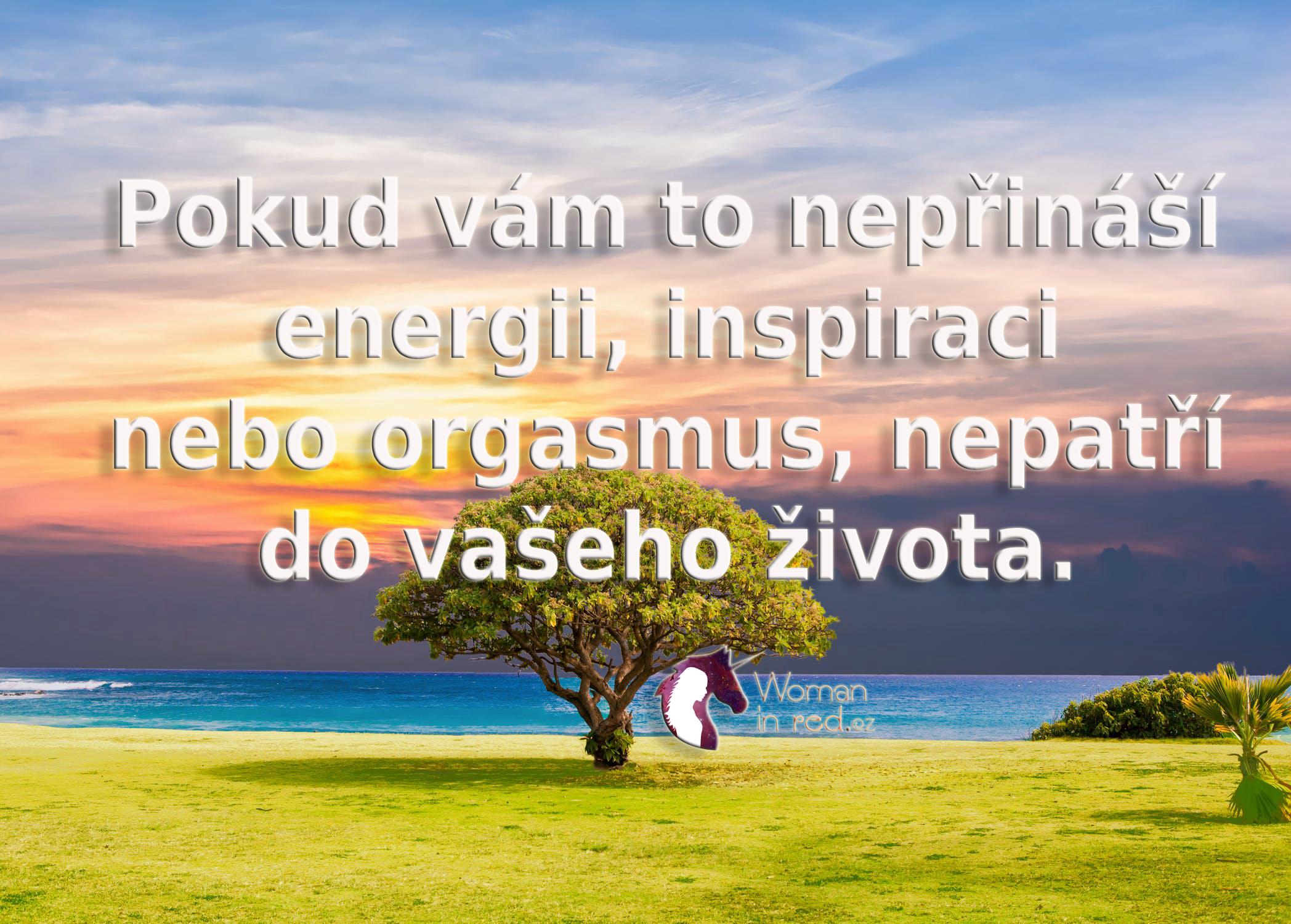 tree-sea-grass-nature-451855.jpg