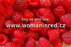 raspberries-fruits-fruit-berries-59999.j