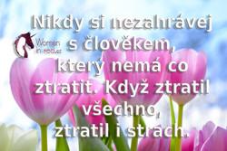 spring-pink-tulip-flower-1019475.jpg