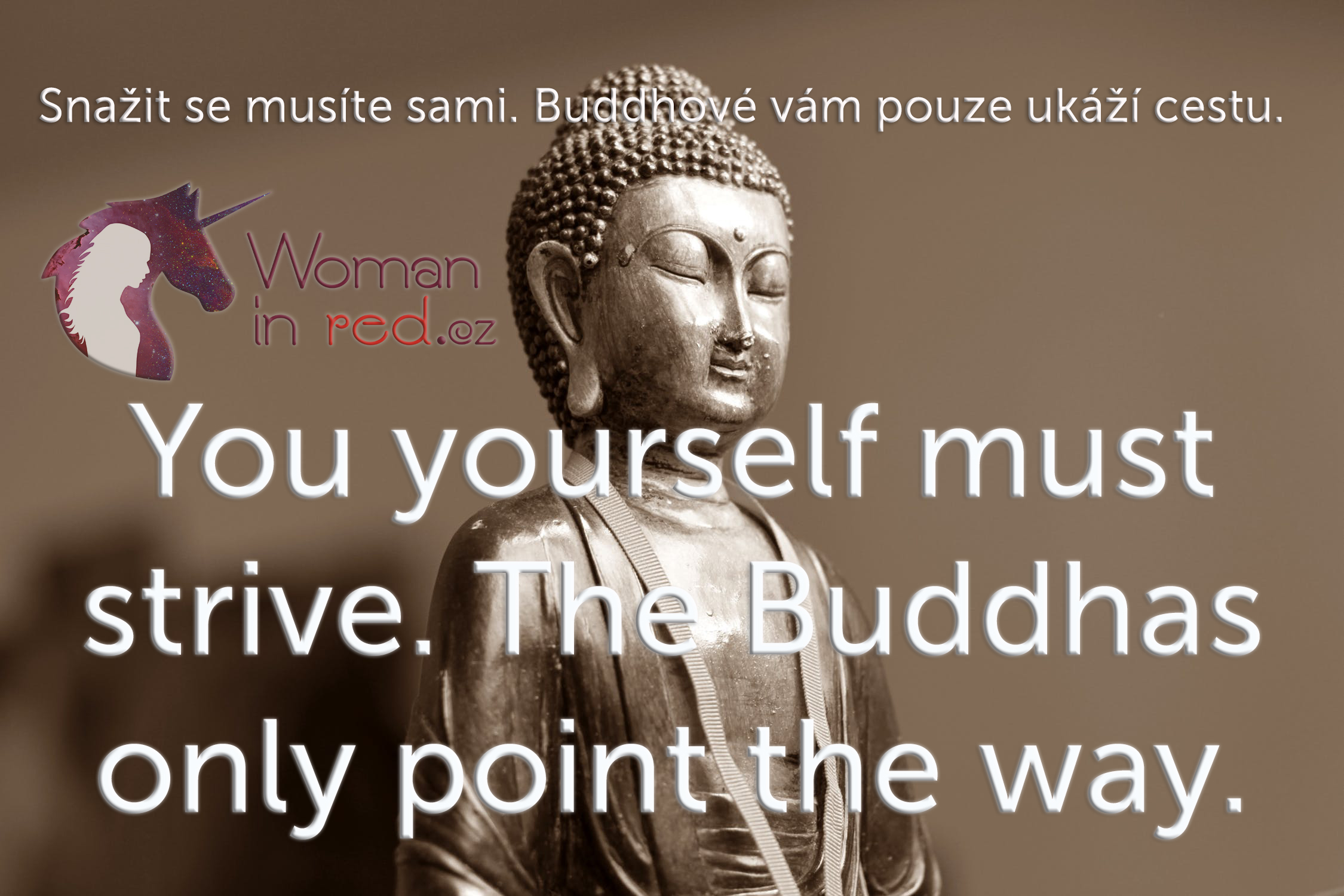buddha-meditation-east-eastern-65222.jpg