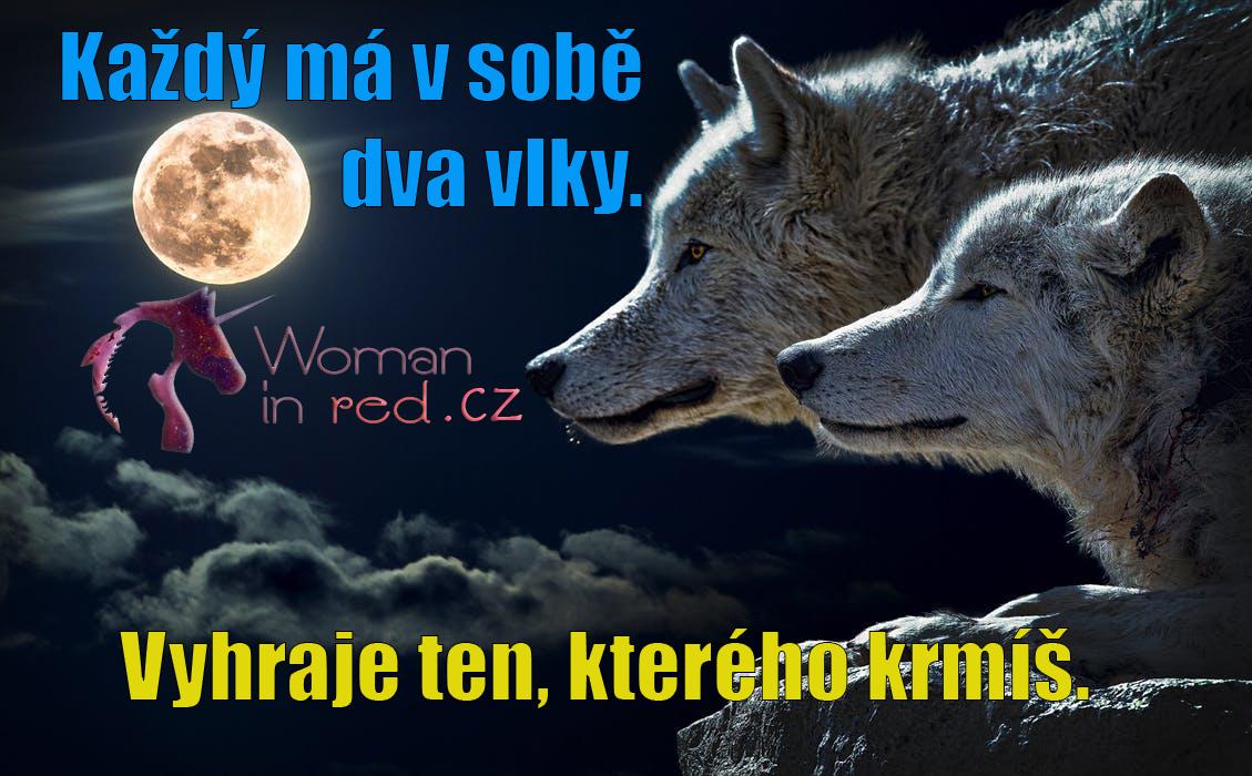 wolf-torque-wolf-moon-cloud-45242.jpg