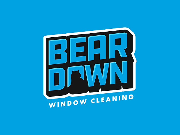 Bear Down Window Cleaning
