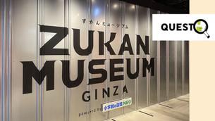 """世界中の生物を探す旅に出よう!好奇心が溢れてくる場所 """"ZUKAN MUSEUM GINZA"""""""