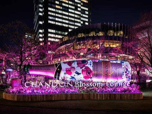 お花見=CHANDONというイメージを定着。新しい春の風物詩、CHANDON Blossom Lounge。