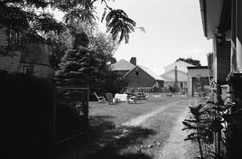 St. Louis Street Backyard