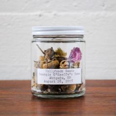 Hollyhock Seeds