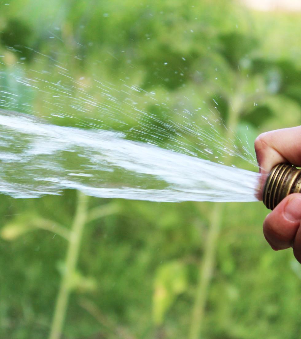 Entretien du filtre à eau