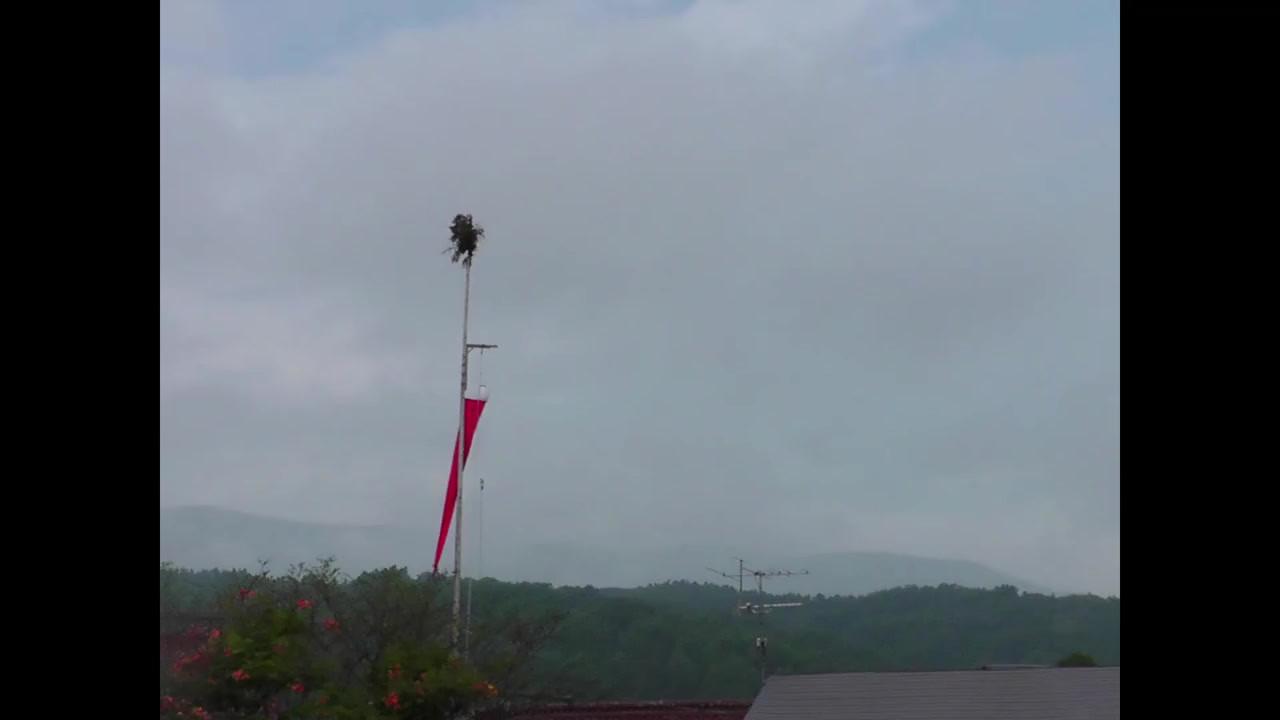 Tono Obon Holiday Movie /45seconds  空に向けて垂直に立つ木と旗は祖霊を迎える目印になる。 初盆から3年間はその家に迎灯篭木(ムカイトロゲ)が掲げられる。  出身地であり民俗学のメッカ岩手県遠野市のお盆の夏休み記録。  110年前の1909年8月にその地を散歩した柳田國男が見た風景と、110年後の2019年8月に帰省散歩した風景が重なる。  故郷の風景の中に入ること/離れることについて。