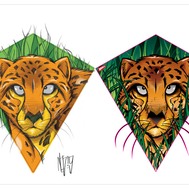 Super Kites Graphics