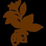 植物02.png