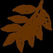植物01.png