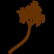 植物04.png